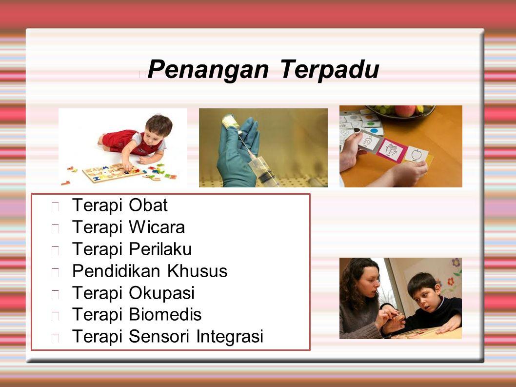 Penangan Terpadu Terapi Obat Terapi Wicara Terapi Perilaku Pendidikan Khusus Terapi Okupasi Terapi Biomedis Terapi Sensori Integrasi