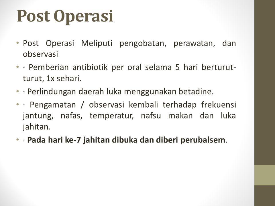 Post Operasi Post Operasi Meliputi pengobatan, perawatan, dan observasi · Pemberian antibiotik per oral selama 5 hari berturut- turut, 1x sehari. · Pe