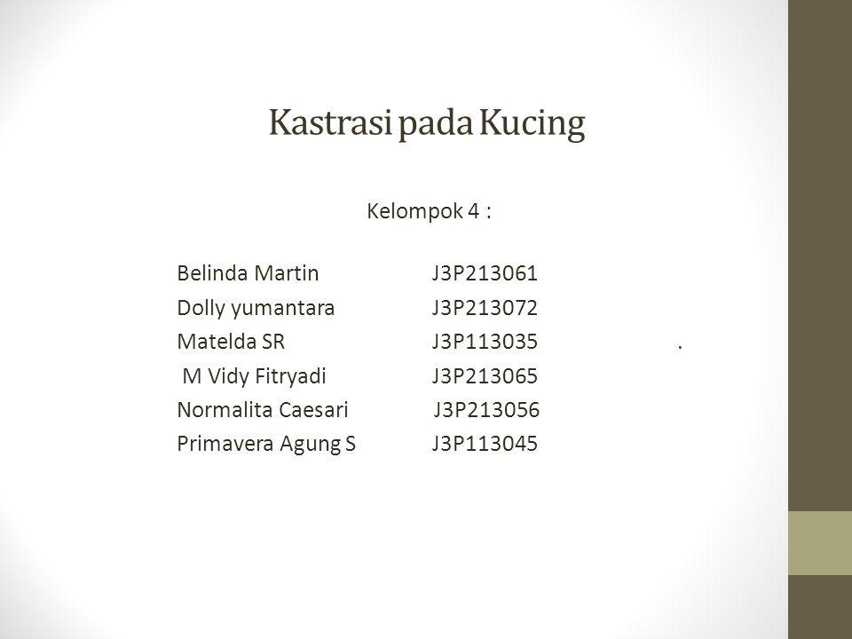 Kastrasi pada Kucing Kelompok 4 : Belinda Martin J3P213061 Dolly yumantara J3P213072 Matelda SR J3P113035. M Vidy Fitryadi J3P213065 Normalita Caesari
