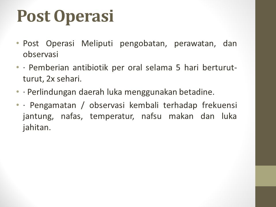 Post Operasi Post Operasi Meliputi pengobatan, perawatan, dan observasi · Pemberian antibiotik per oral selama 5 hari berturut- turut, 2x sehari. · Pe