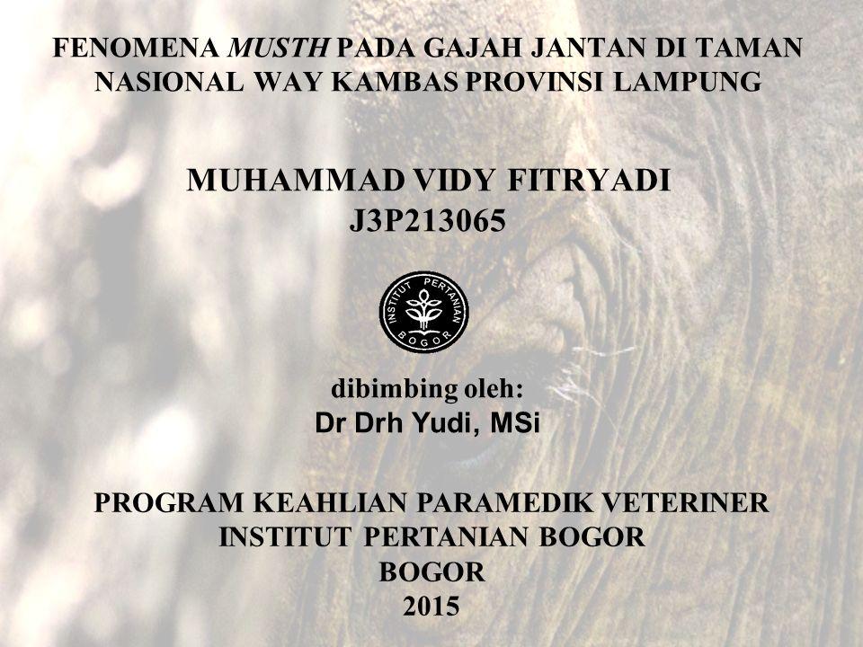 FENOMENA MUSTH PADA GAJAH JANTAN DI TAMAN NASIONAL WAY KAMBAS PROVINSI LAMPUNG MUHAMMAD VIDY FITRYADI J3P213065 dibimbing oleh: Dr Drh Yudi, MSi PROGR