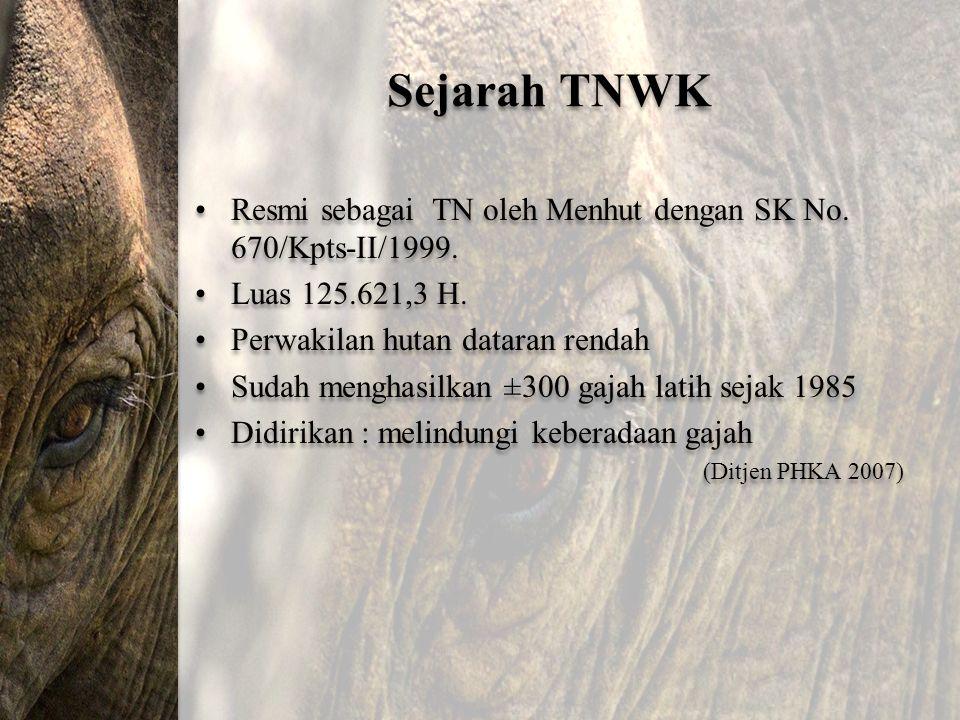 Sejarah TNWK Resmi sebagai TN oleh Menhut dengan SK No. 670/Kpts-II/1999. Luas 125.621,3 H. Perwakilan hutan dataran rendah Sudah menghasilkan ±300 ga