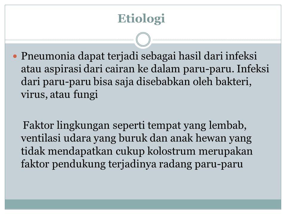 Etiologi Pneumonia dapat terjadi sebagai hasil dari infeksi atau aspirasi dari cairan ke dalam paru-paru. Infeksi dari paru-paru bisa saja disebabkan