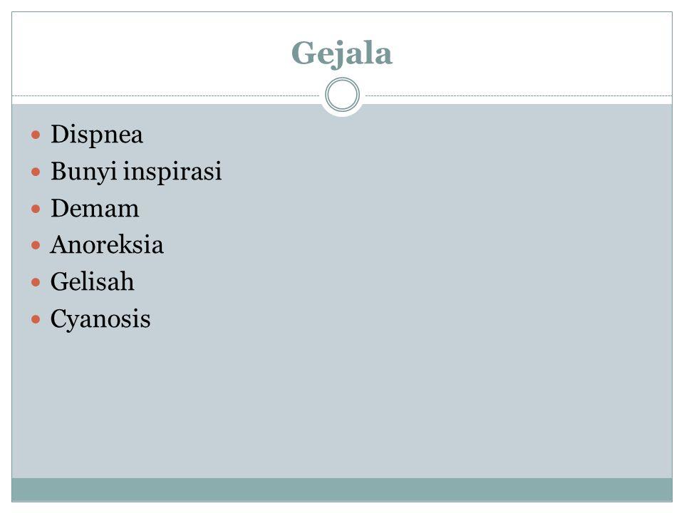Gejala Dispnea Bunyi inspirasi Demam Anoreksia Gelisah Cyanosis