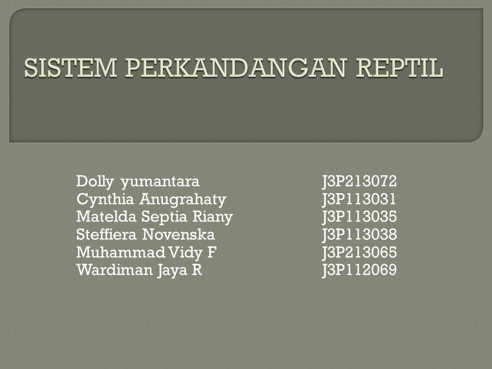 Dolly yumantara J3P213072 Cynthia Anugrahaty J3P113031 Matelda Septia Riany J3P113035 Steffiera Novenska J3P113038 Muhammad Vidy F J3P213065 Wardiman Jaya R J3P112069