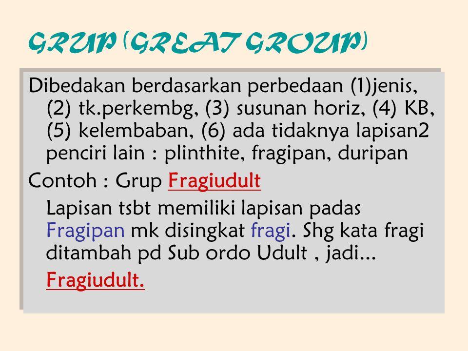 GRUP (GREAT GROUP) Dibedakan berdasarkan perbedaan (1)jenis, (2) tk.perkembg, (3) susunan horiz, (4) KB, (5) kelembaban, (6) ada tidaknya lapisan2 penciri lain : plinthite, fragipan, duripan Contoh : Grup Fragiudult Lapisan tsbt memiliki lapisan padas Fragipan mk disingkat fragi.