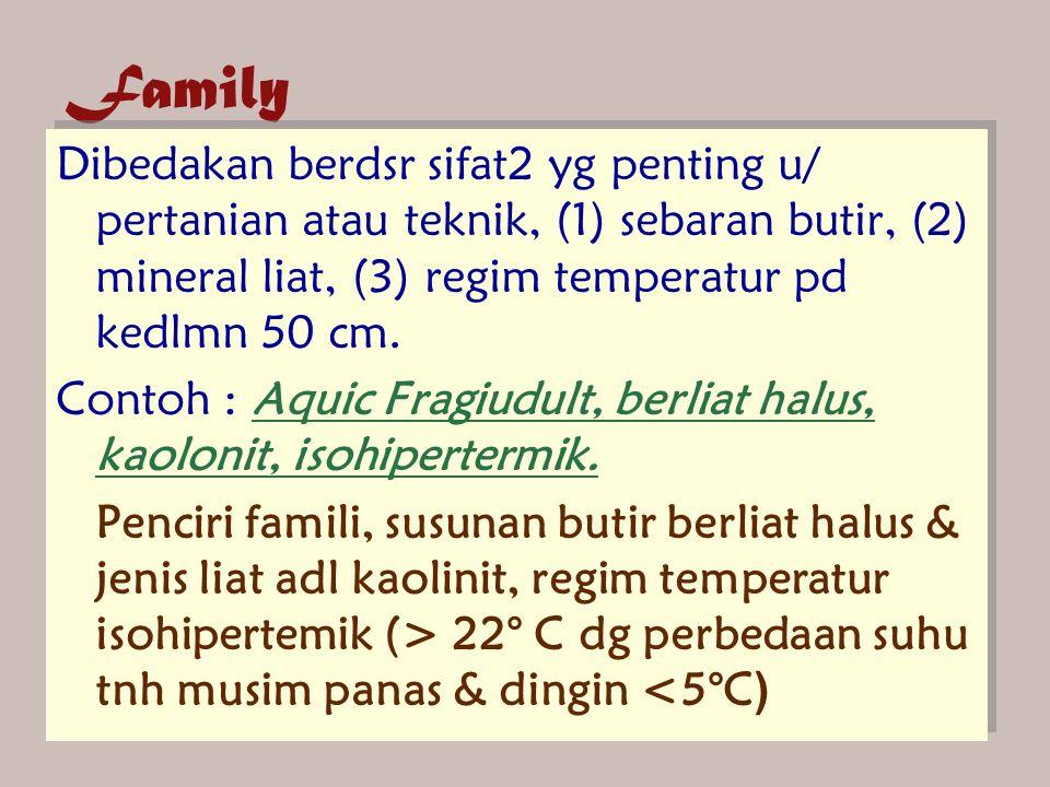 Family Dibedakan berdsr sifat2 yg penting u/ pertanian atau teknik, (1) sebaran butir, (2) mineral liat, (3) regim temperatur pd kedlmn 50 cm. Contoh