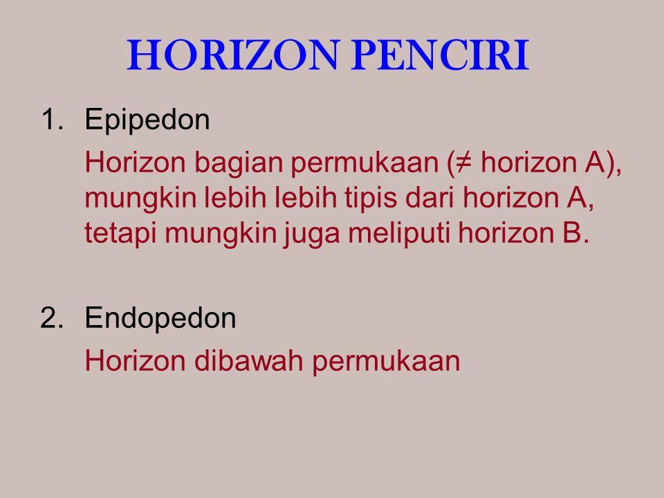 HORIZON PENCIRI 1.Epipedon Horizon bagian permukaan (≠ horizon A), mungkin lebih lebih tipis dari horizon A, tetapi mungkin juga meliputi horizon B.