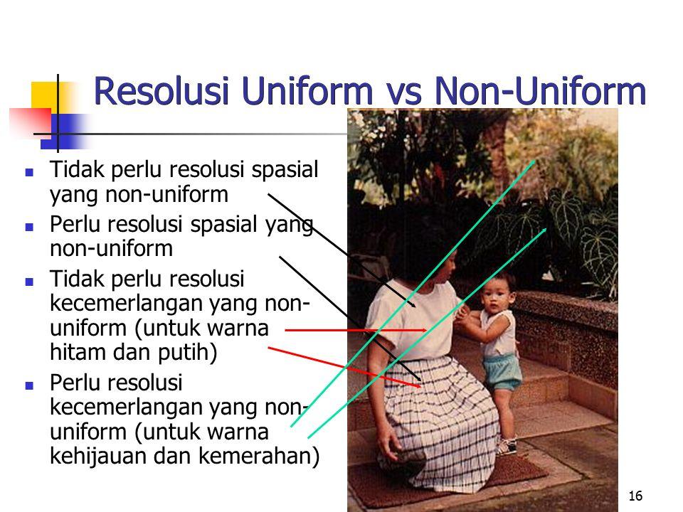 16 Resolusi Uniform vs Non-Uniform Tidak perlu resolusi spasial yang non-uniform Perlu resolusi spasial yang non-uniform Tidak perlu resolusi kecemerl