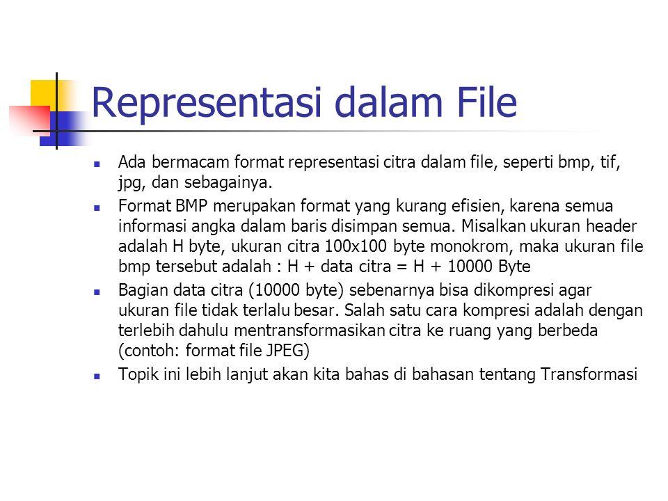 Representasi dalam File Ada bermacam format representasi citra dalam file, seperti bmp, tif, jpg, dan sebagainya. Format BMP merupakan format yang kur