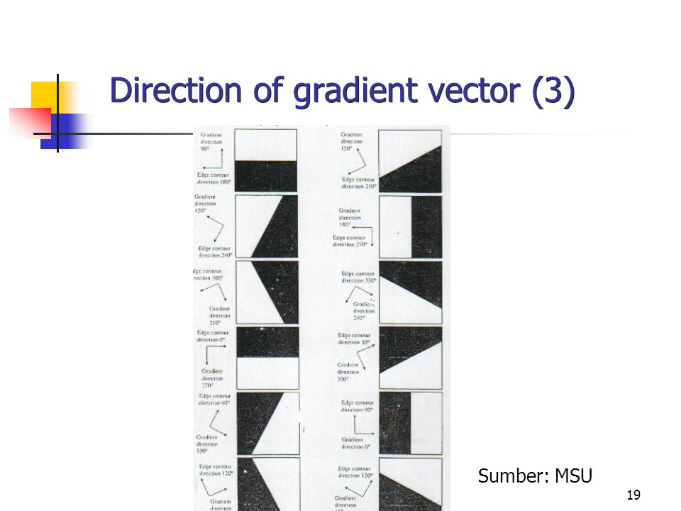 19 Direction of gradient vector (3) Sumber: MSU