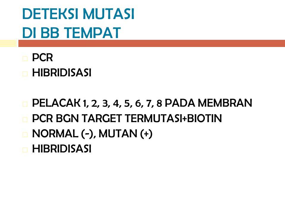 DETEKSI MUTASI DI BB TEMPAT  PCR  HIBRIDISASI  PELACAK 1, 2, 3, 4, 5, 6, 7, 8 PADA MEMBRAN  PCR BGN TARGET TERMUTASI+BIOTIN  NORMAL (-), MUTAN (+