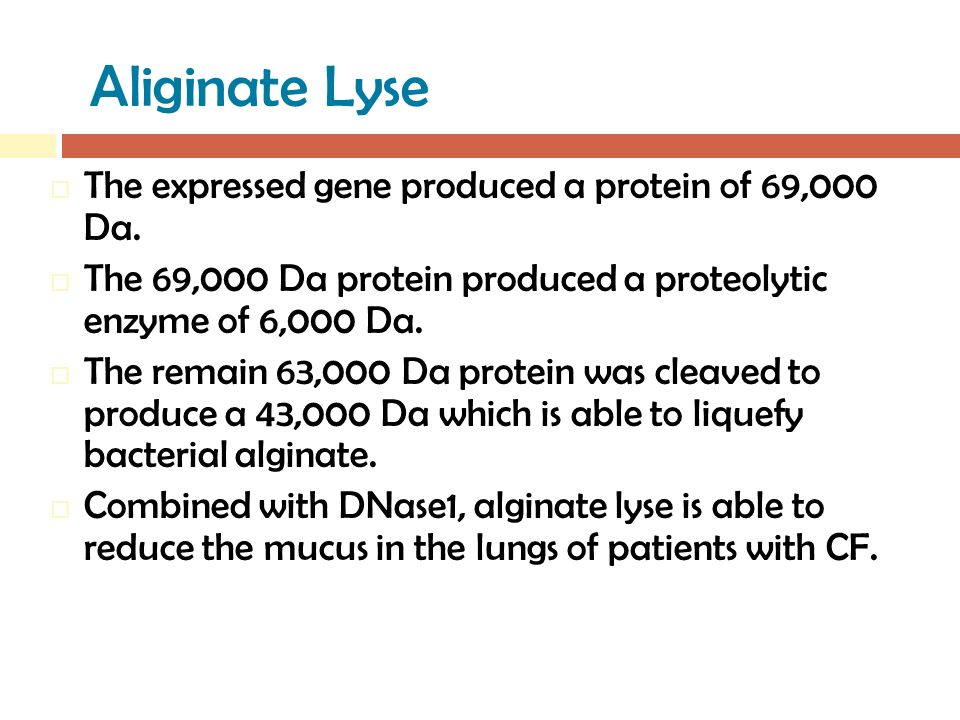 Aliginate Lyse  The expressed gene produced a protein of 69,000 Da.