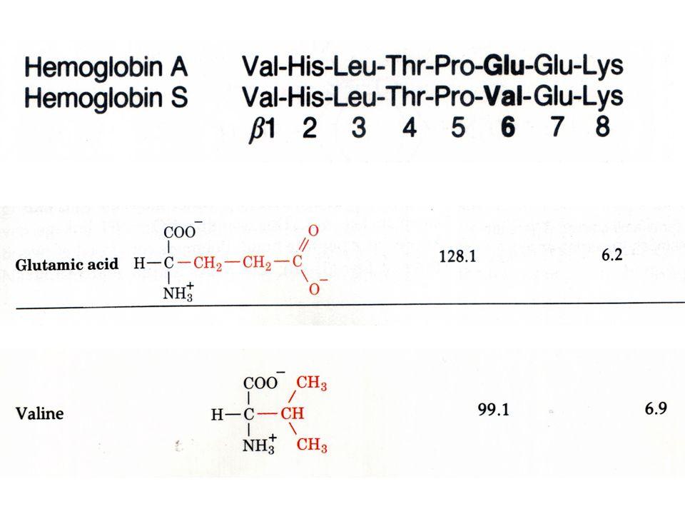 PCR/OLA  DNA ligase is added.