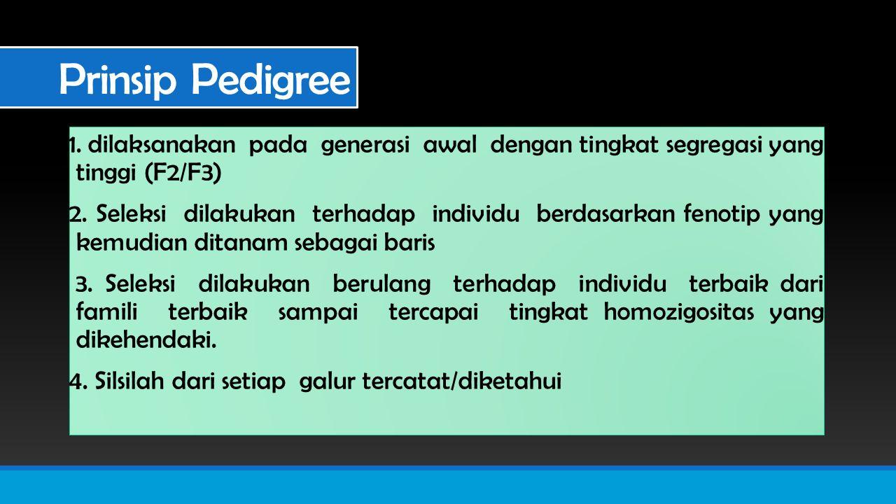 Prinsip Pedigree 1.dilaksanakan pada generasi awal dengan tingkat segregasi yang tinggi (F2/F3) 2.