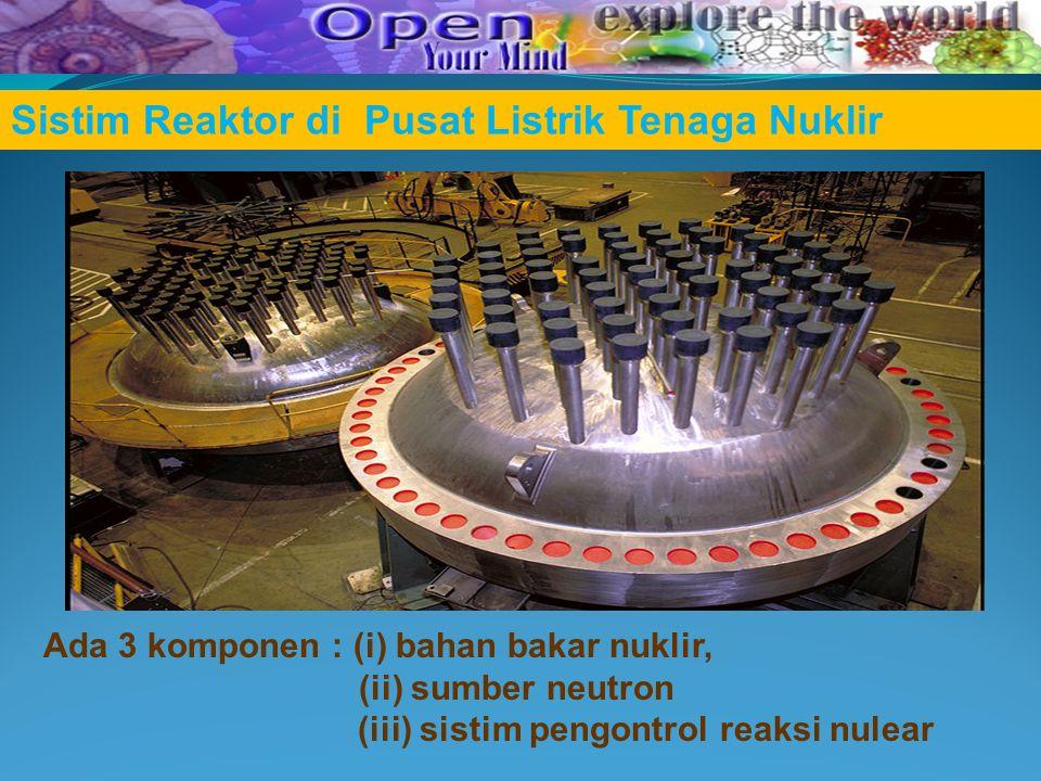 Sistim Reaktor di Pusat Listrik Tenaga Nuklir Ada 3 komponen : (i) bahan bakar nuklir, (ii) sumber neutron (iii) sistim pengontrol reaksi nulear