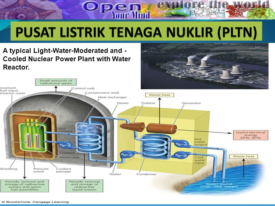 A typical Light-Water-Moderated and - Cooled Nuclear Power Plant with Water Reactor.