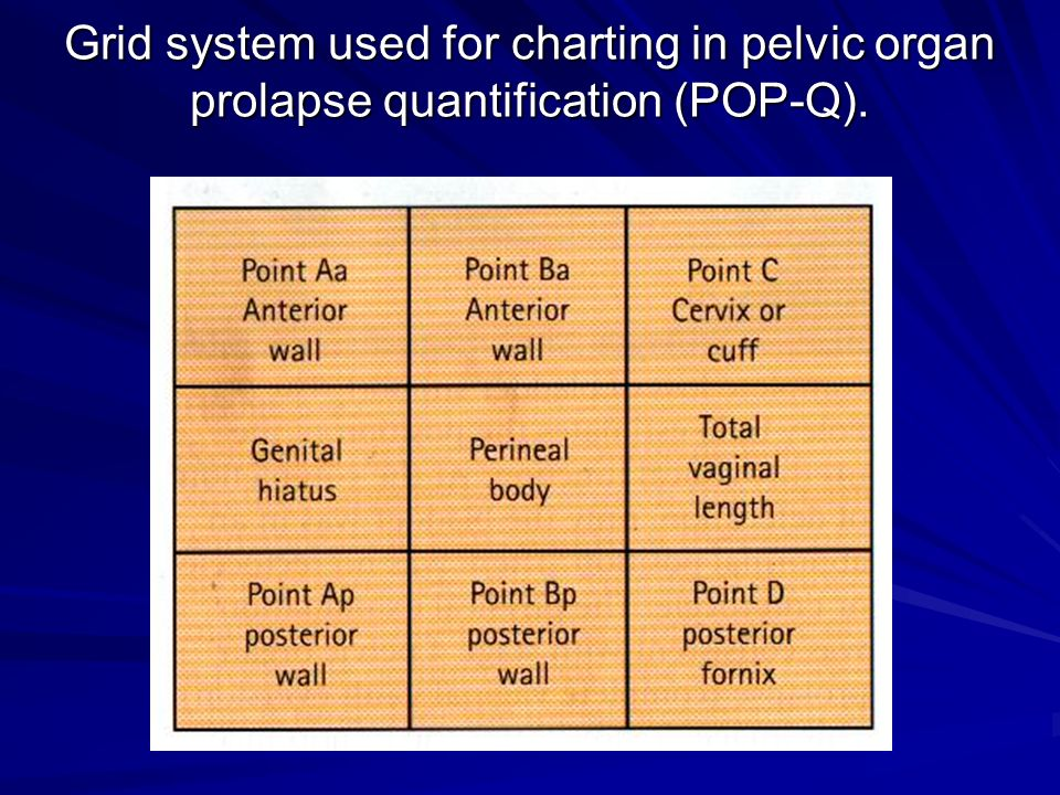 Grid system used for charting in pelvic organ prolapse quantification (POP-Q).
