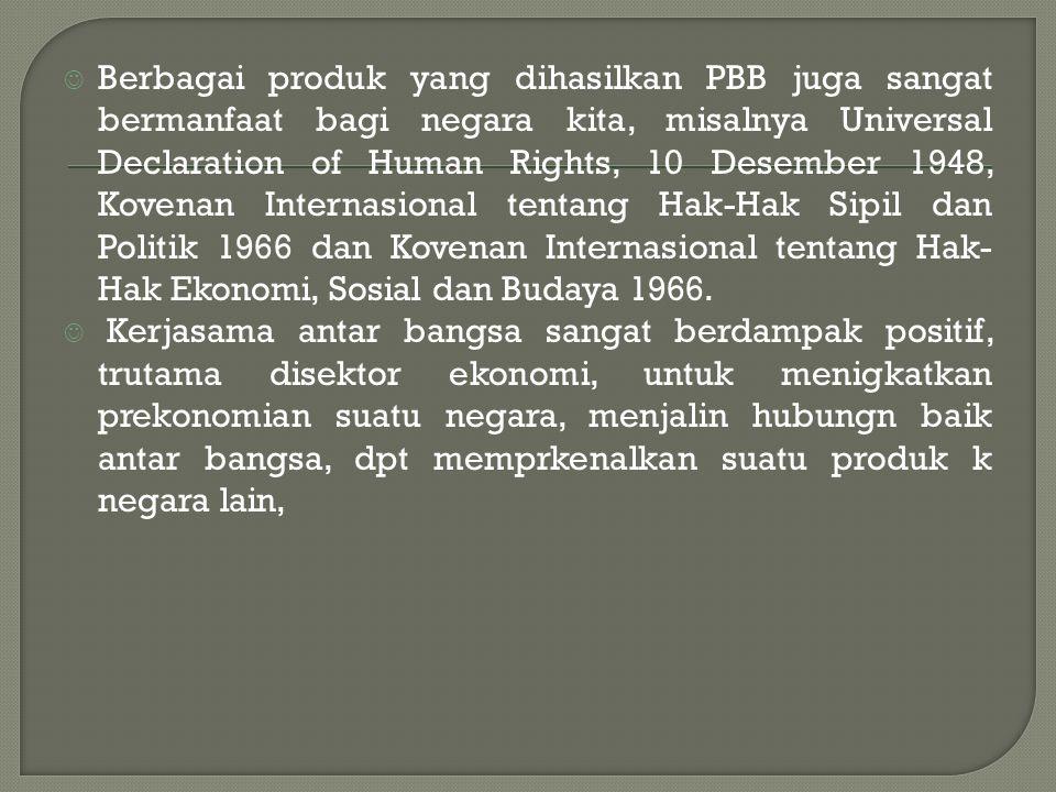 Berbagai produk yang dihasilkan PBB juga sangat bermanfaat bagi negara kita, misalnya Universal Declaration of Human Rights, 10 Desember 1948, Kovenan Internasional tentang Hak-Hak Sipil dan Politik 1966 dan Kovenan Internasional tentang Hak- Hak Ekonomi, Sosial dan Budaya 1966.