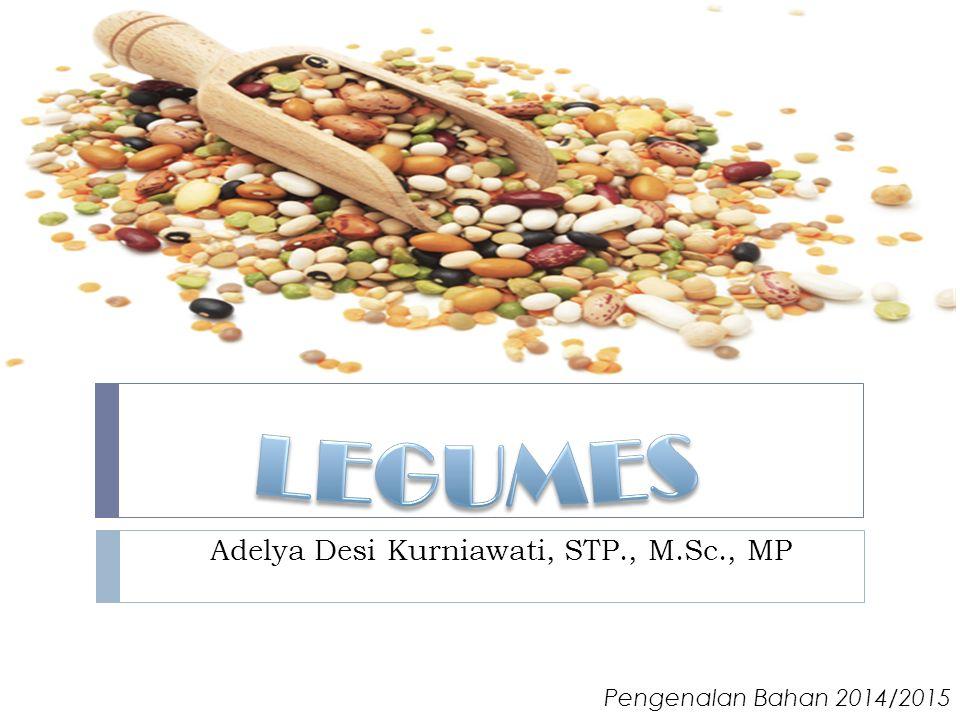 Products  Bubur kacang hijau  Tepung hunkwe  Kecambah (sprout) Pengenalan Bahan 2014/2015 – Adelya Desi K., STP., M.Sc., MP