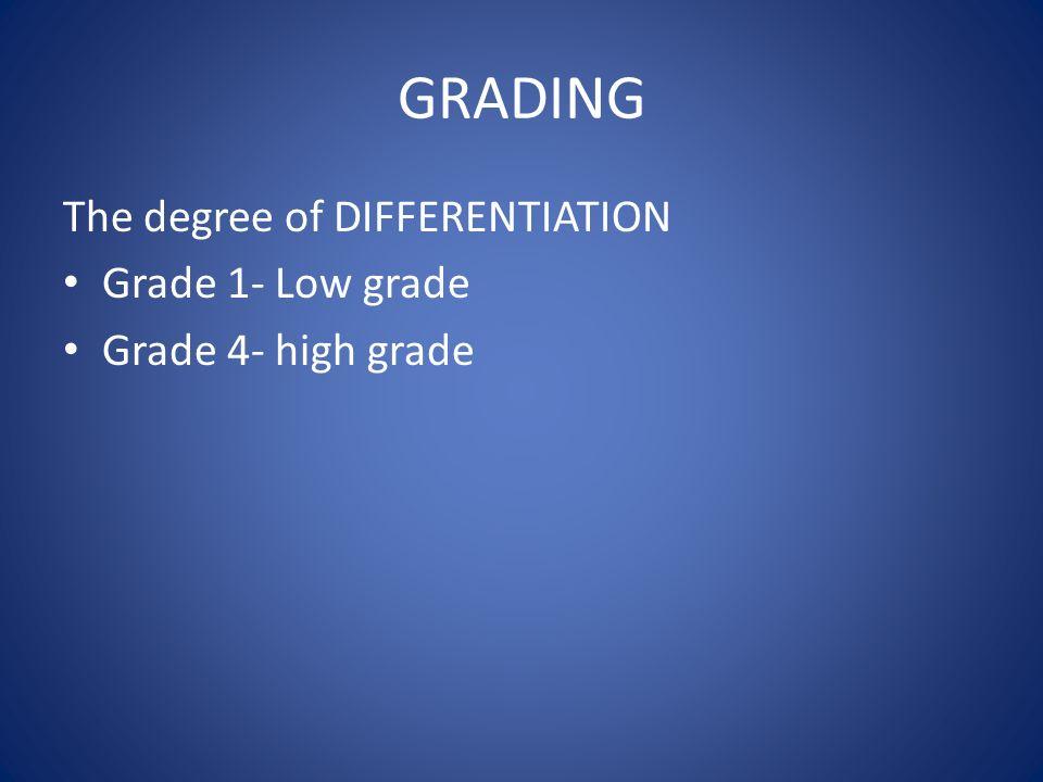 GRADING The degree of DIFFERENTIATION Grade 1- Low grade Grade 4- high grade