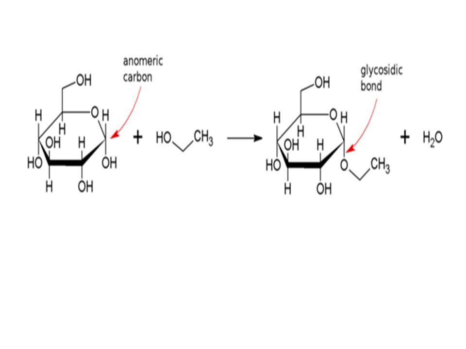 Jenis-jenis disakarida : Sukrosa /sakarosa : D-glukosa & D-fruktosa Laktosa : D-glukosa & D-galaktosa Maltosa : D-glukosa & D-glukosa dg ikt  -1,4  bisa didpt dr hidrolisis pati dg  -amilase Selubiosa : D-glukosa & D-glukosa dg ikt  -1,4  Tata nama : menggunakan 3 huruf simbol utk monosakarida dengan akkhiran f atau p (utk furanosa dan piranosa) Sakarosa Maltosa