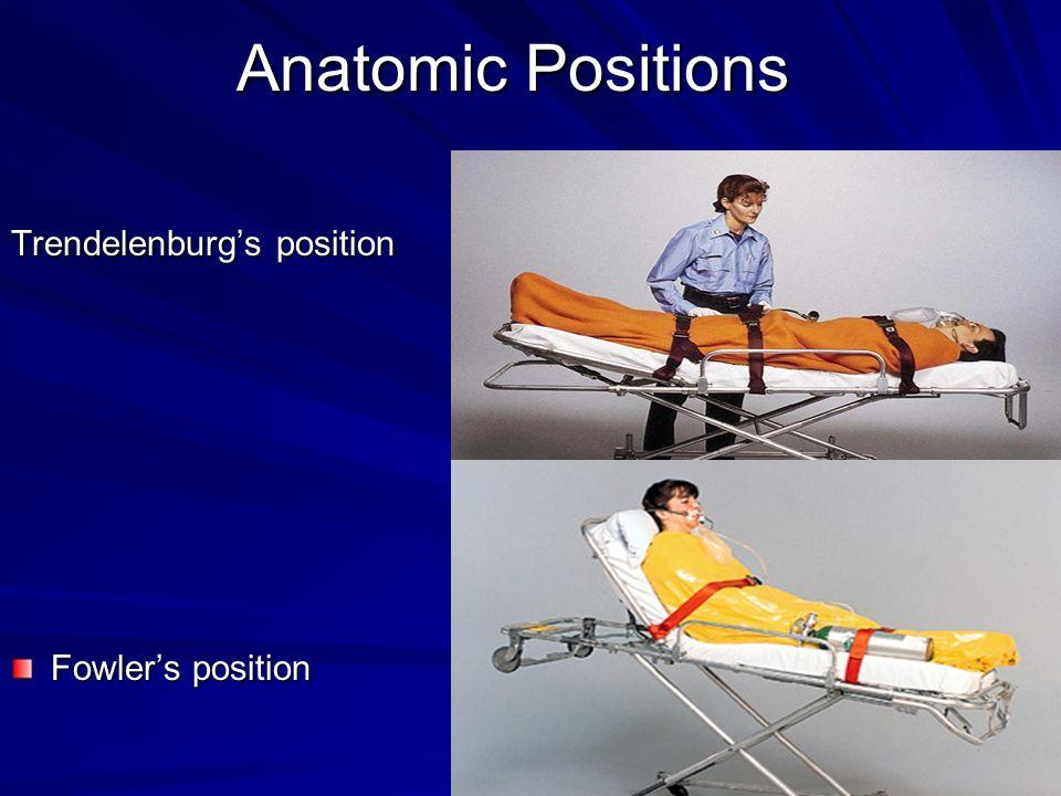 Trendelenburg's position Fowler's position