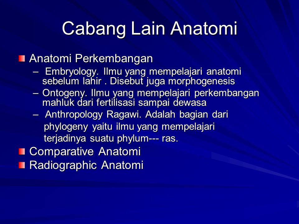 Cabang Lain Anatomi Anatomi Perkembangan – Embryology. Ilmu yang mempelajari anatomi sebelum lahir. Disebut juga morphogenesis –Ontogeny. Ilmu yang me