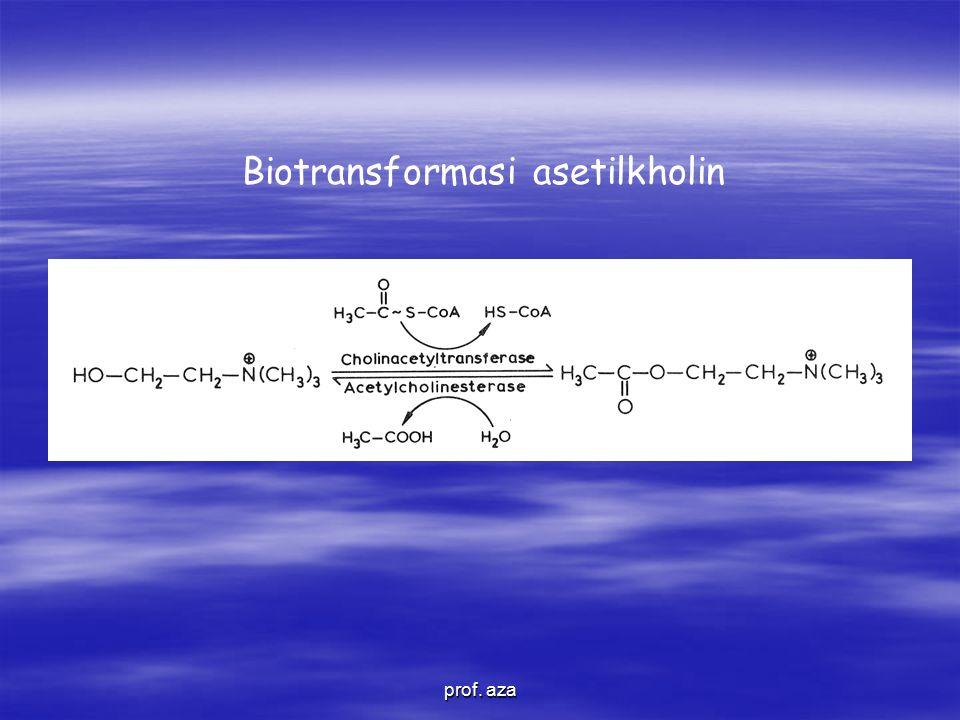 Biotransformasi asetilkholin prof. aza