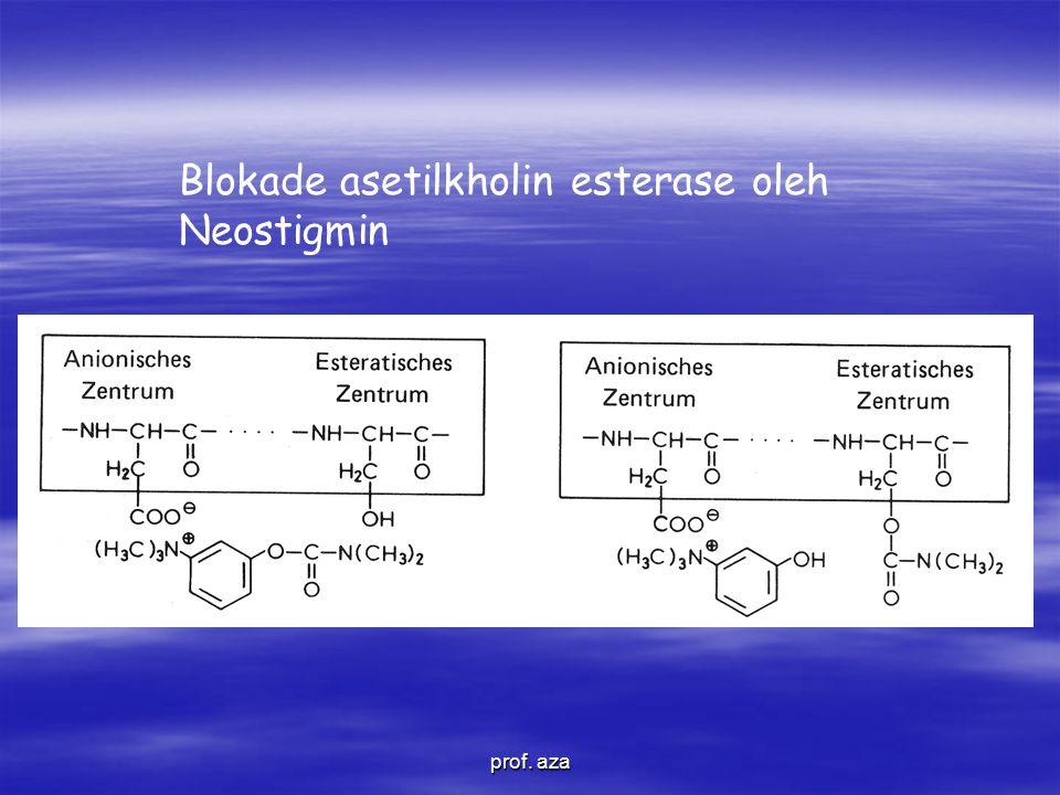 Blokade asetilkholin esterase oleh Neostigmin prof. aza