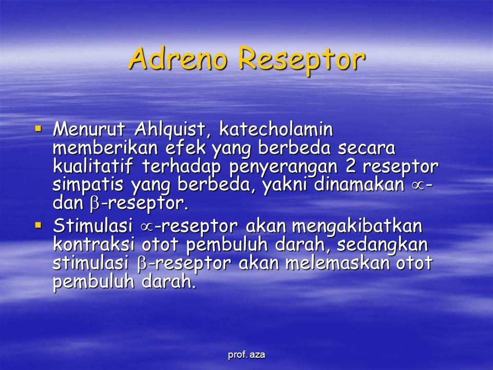 Adreno Reseptor  Menurut Ahlquist, katecholamin memberikan efek yang berbeda secara kualitatif terhadap penyerangan 2 reseptor simpatis yang berbeda, yakni dinamakan  - dan  -reseptor.