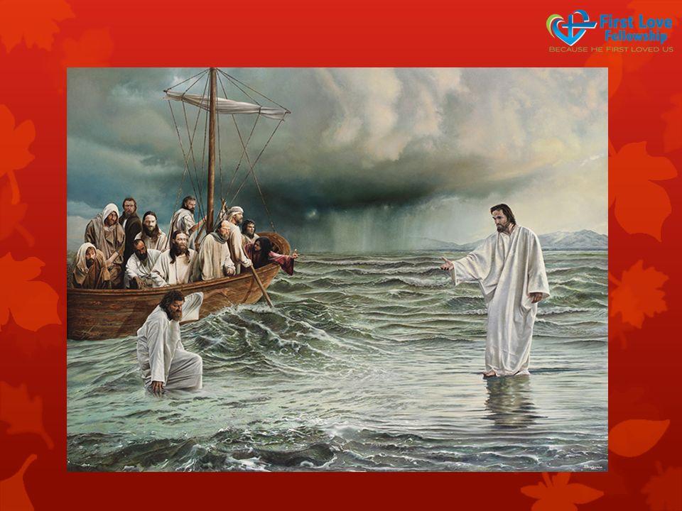 See Jesus in your storm…  …..Bring Jesus back to your senses  …See Jesus  …Hear Jesus  …Speak Jesus  … Feel Jesus  …Touch Jesus