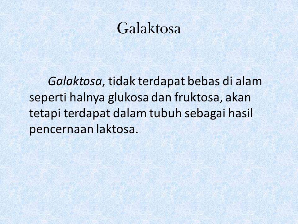 Galaktosa Galaktosa, tidak terdapat bebas di alam seperti halnya glukosa dan fruktosa, akan tetapi terdapat dalam tubuh sebagai hasil pencernaan laktosa.