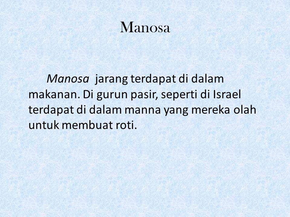 Manosa Manosa jarang terdapat di dalam makanan.
