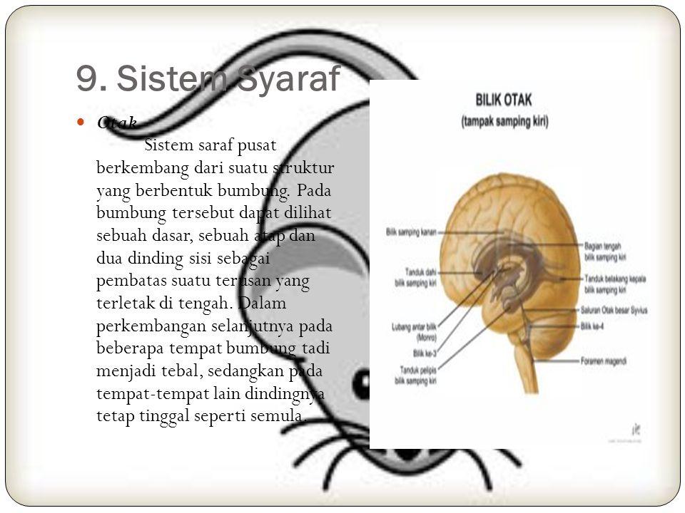 Next: Alat reproduksi perempuan Alatreproduksi perempuan terdiri atas indung telur, tabung rahim, rahim, liang senggama dan alat-alat kelamin luar. In