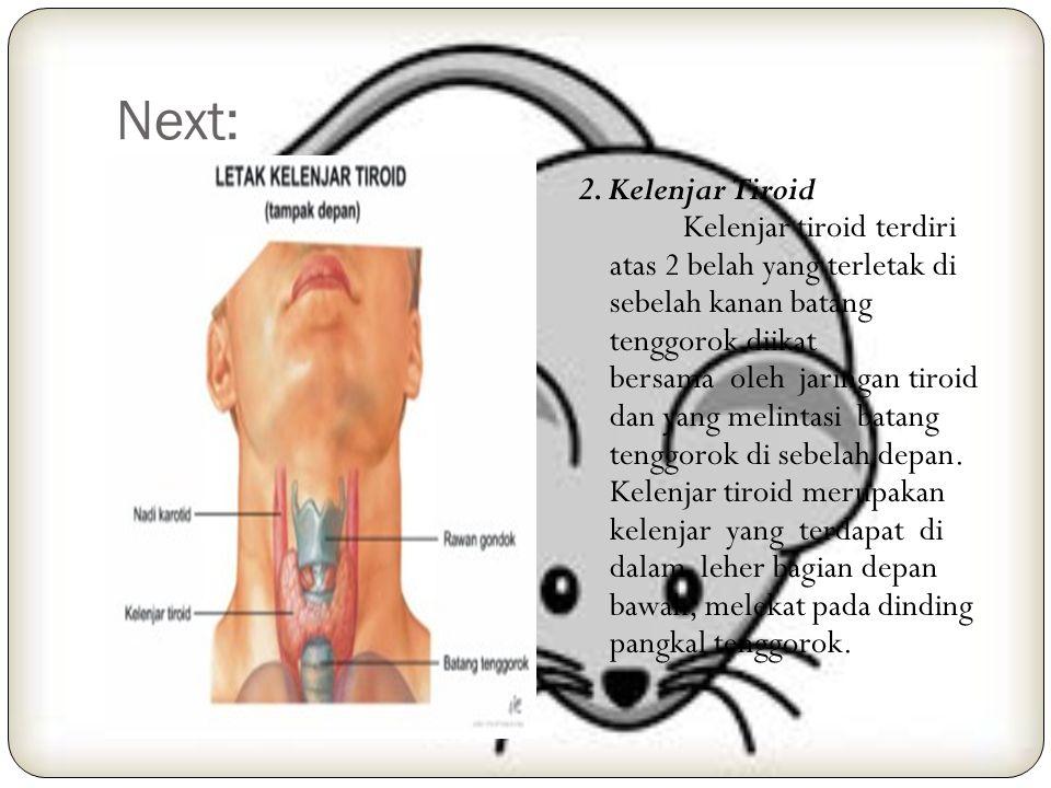 10. Sistem Endokrin 1. Kelenjar Himofise Kelenjar himofise adalah suatu kelenjar endokrin yang terletak di dasar tengkorak, di dalam fosa hipofise tul