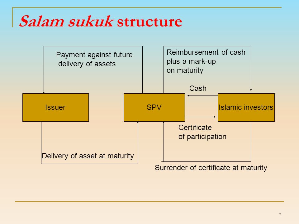 17 Number of sukuk issues