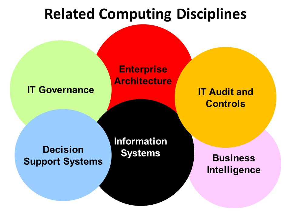 Enterprise Architecture Business Intelligence Related Computing Disciplines IT Governance Information Systems Decision Support Systems IT Audit and Controls