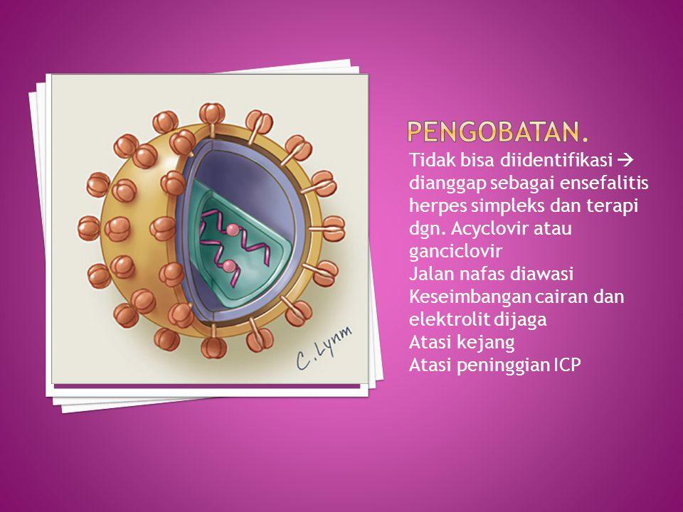 Tidak bisa diidentifikasi  dianggap sebagai ensefalitis herpes simpleks dan terapi dgn.