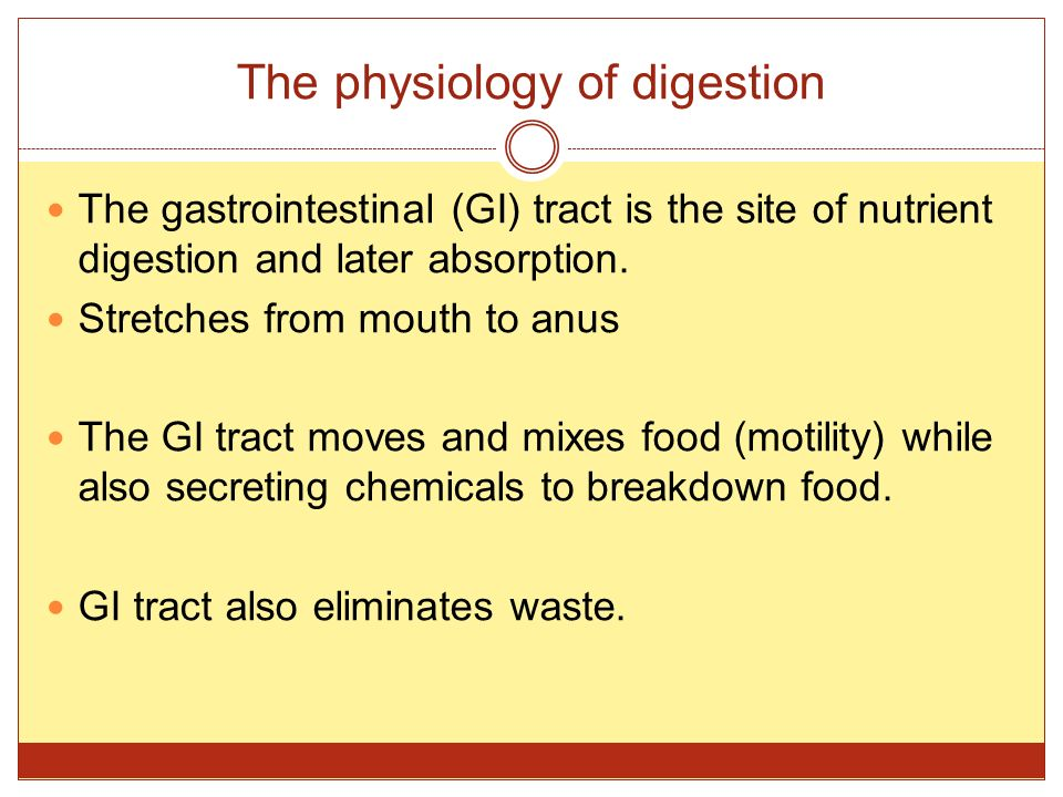 The physiology of digestion The gastrointestinal (GI) tract is the site of nutrient digestion and later absorption.