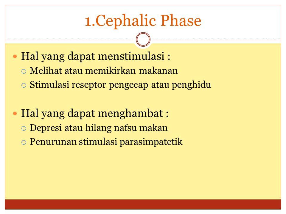 1.Cephalic Phase Hal yang dapat menstimulasi :  Melihat atau memikirkan makanan  Stimulasi reseptor pengecap atau penghidu Hal yang dapat menghambat