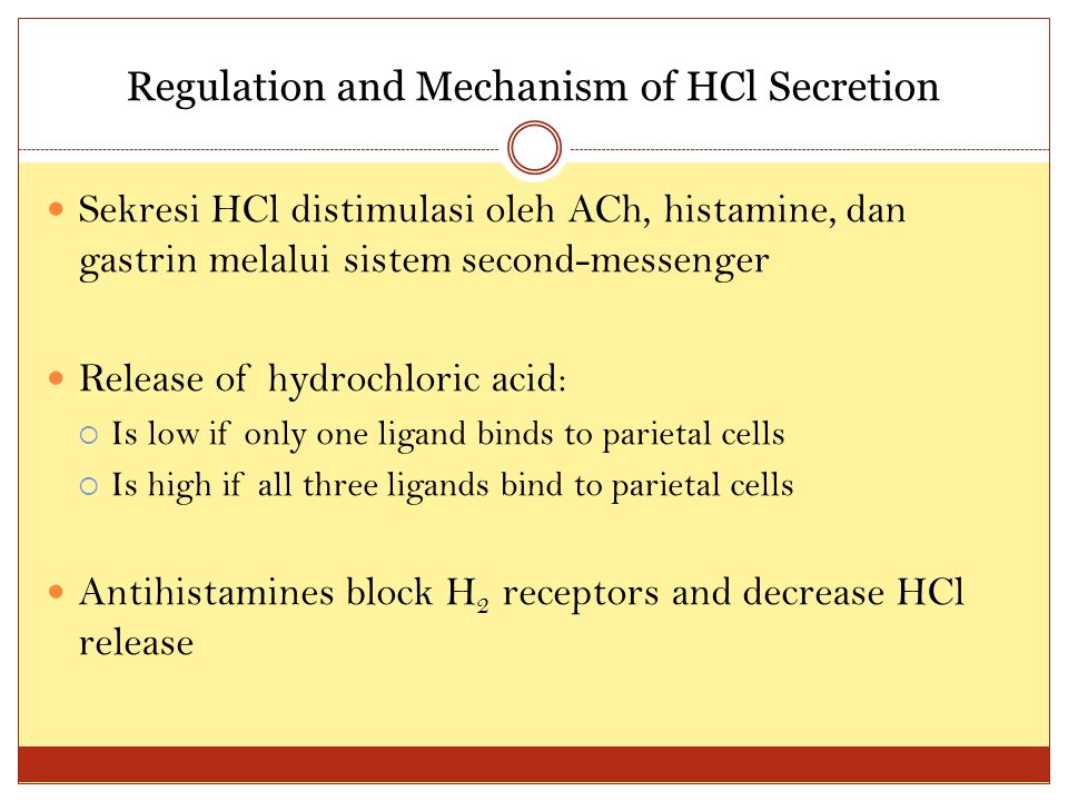 Regulation and Mechanism of HCl Secretion Sekresi HCl distimulasi oleh ACh, histamine, dan gastrin melalui sistem second-messenger Release of hydrochloric acid:  Is low if only one ligand binds to parietal cells  Is high if all three ligands bind to parietal cells Antihistamines block H 2 receptors and decrease HCl release