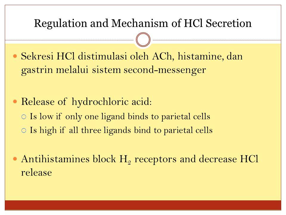 Regulation and Mechanism of HCl Secretion Sekresi HCl distimulasi oleh ACh, histamine, dan gastrin melalui sistem second-messenger Release of hydrochl