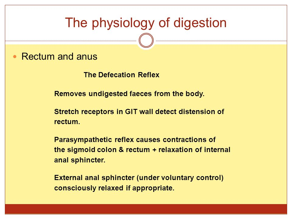 The physiology of digestion Rectum and anus The Defecation Reflex Removes undigested faeces from the body. Stretch receptors in GIT wall detect disten