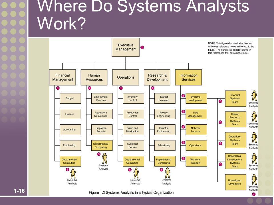 systems analysts The systems analyst systematically assesses how users interact with technology and how businesses function by examining the inputting and processing of data.