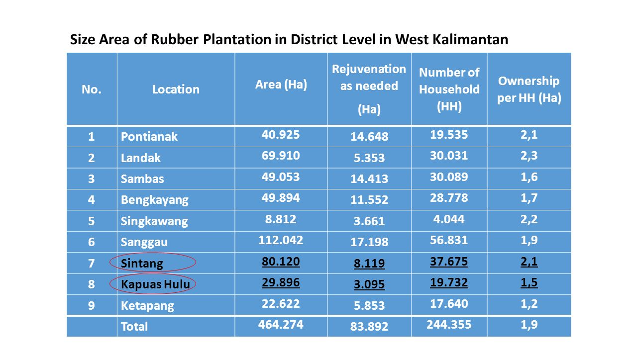 No.Location Area (Ha) Rejuvenation as needed (Ha) Number of Household (HH) Ownership per HH (Ha) 1Pontianak 40.925 14.648 19.5352,1 2Landak 69.910 5.353 30.0312,3 3Sambas 49.053 14.413 30.0891,6 4Bengkayang 49.894 11.552 28.7781,7 5Singkawang 8.812 3.661 4.0442,2 6Sanggau 112.042 17.198 56.8311,9 7Sintang 80.120 8.119 37.6752,1 8Kapuas Hulu 29.896 3.095 19.7321,5 9Ketapang 22.622 5.853 17.6401,2 Total 464.274 83.892 244.3551,9 Size Area of Rubber Plantation in District Level in West Kalimantan