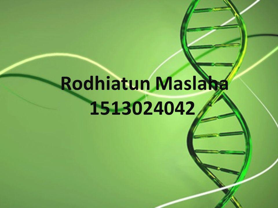 Rodhiatun Maslaha 1513024042