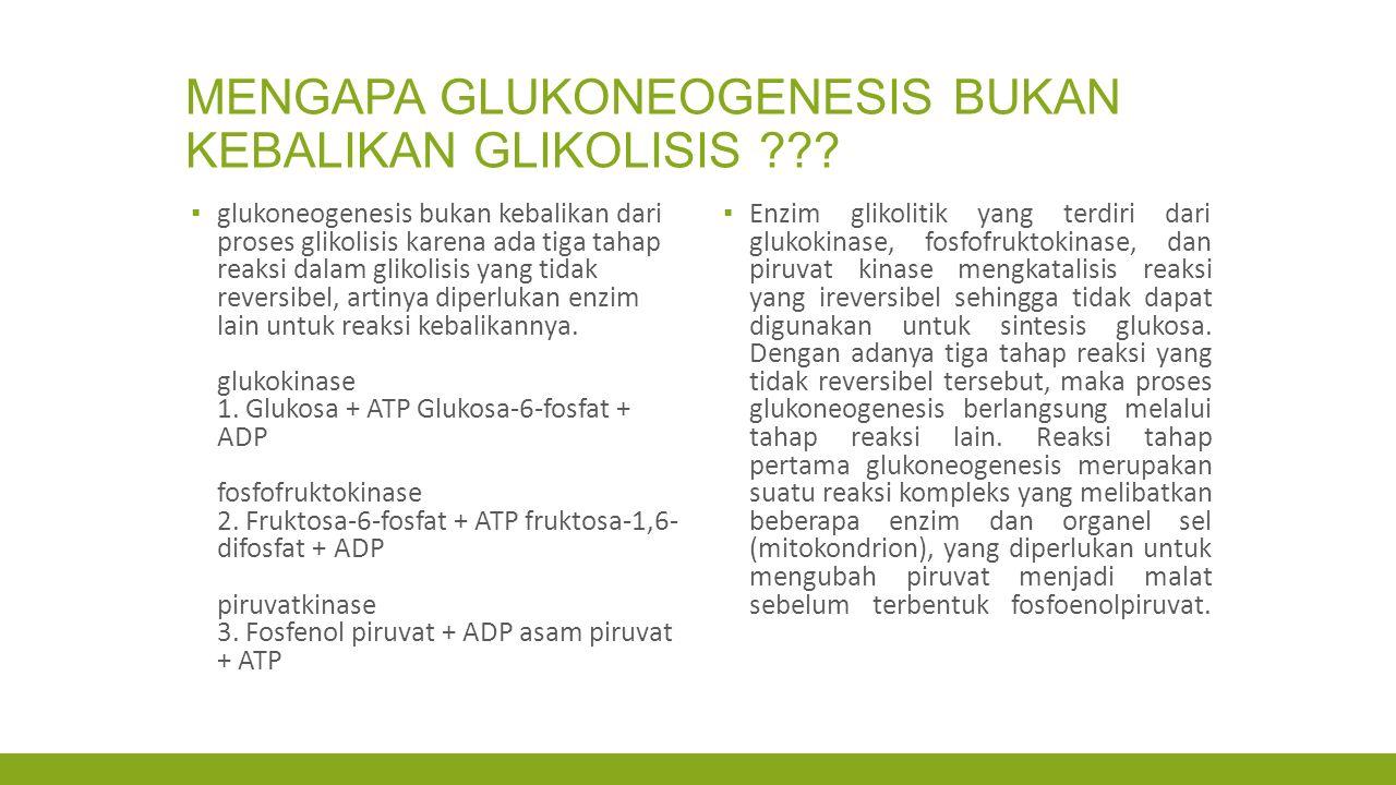 MENGAPA GLUKONEOGENESIS BUKAN KEBALIKAN GLIKOLISIS ??? ▪ glukoneogenesis bukan kebalikan dari proses glikolisis karena ada tiga tahap reaksi dalam gli