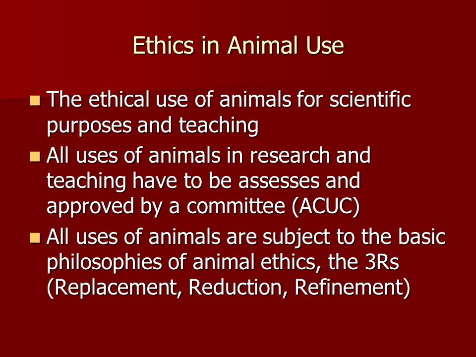 Ethics in Animal Use The ethical use of animals for scientific purposes and teaching The ethical use of animals for scientific purposes and teaching All uses of animals in research and teaching have to be assesses and approved by a committee (ACUC) All uses of animals in research and teaching have to be assesses and approved by a committee (ACUC) All uses of animals are subject to the basic philosophies of animal ethics, the 3Rs (Replacement, Reduction, Refinement) All uses of animals are subject to the basic philosophies of animal ethics, the 3Rs (Replacement, Reduction, Refinement)