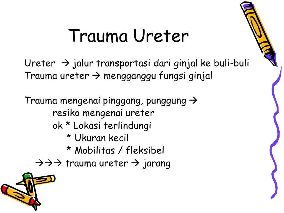Trauma Ureter Ureter  jalur transportasi dari ginjal ke buli-buli Trauma ureter  mengganggu fungsi ginjal Trauma mengenai pinggang, punggung  resik